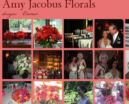 Amy jacobus website