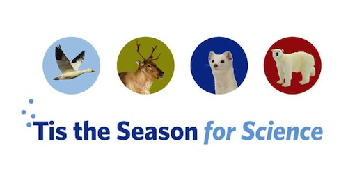Tis-the-season-for-science
