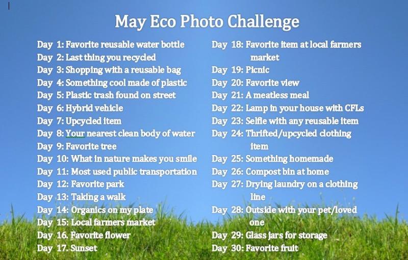 Plastics photo challenge