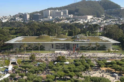 Cal academy opening_day