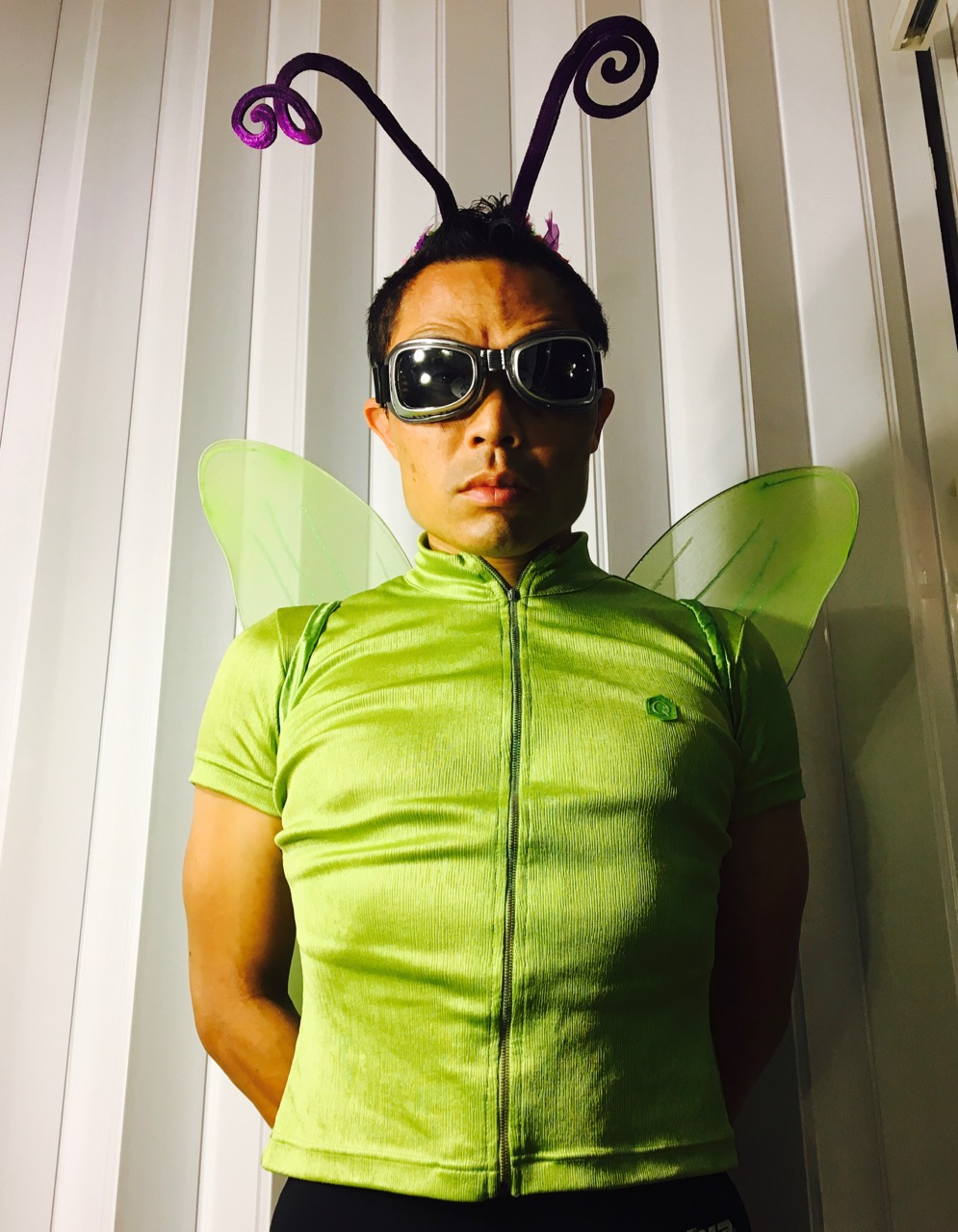Fairy bug costume?